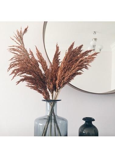 Kuru Çiçek Deposu Dökülmeyen Büyük Kiremit Pampas Demeti Kuru Çiçek 100 cm 7 Adet Kiremit
